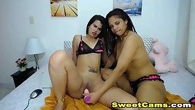 Lesbian Babes Licks Ever Other Honeycomb